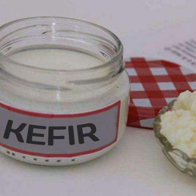Como-Congelar-o-Kefir-de-Leite-e-de-Agua-Dar-um-tempo Como Congelar o Kefir de Leite e de Água / Dar um tempo