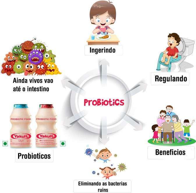00-2 O que é Probiótico: Como Fazer, Tipos e Benefícios