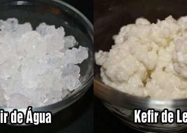 Tipos de Kefir: Qual é o Melhor