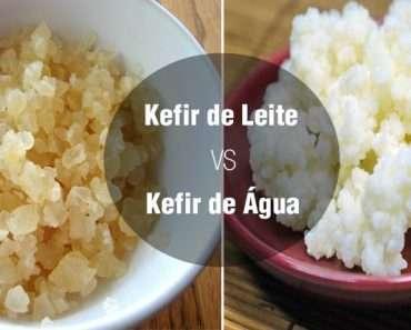 Kefir de Aguá ou Kefir de Leite
