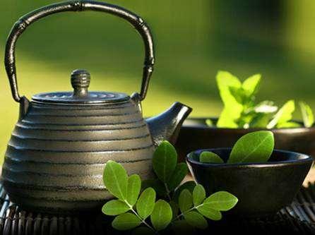 01-8 Chá de Moringa Emagrece?