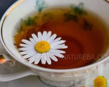 Chá de Camomila com Mel