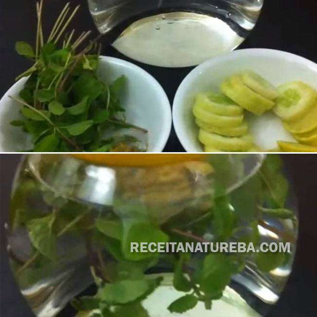 Água-Saborizada-com-Limão1 Água Saborizada com Limão