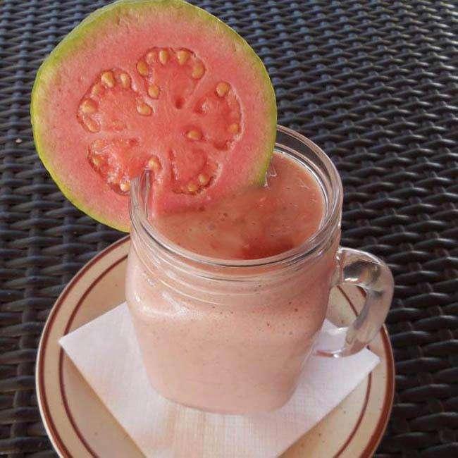 Vitamina-de-Goiaba-com-Leite Vitamina de Goiaba com Leite